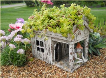 Fairy Garden House Planter. The Best Pots for Carnivorous Plants   Skulls and Turtles Included