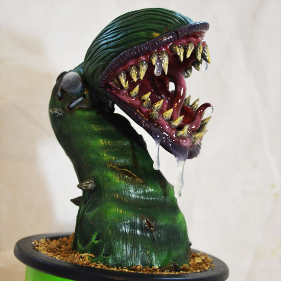 Carnivorous Plant Gift Guide Decor Amp Housewares The